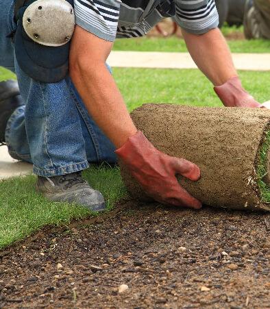 Garden Care image